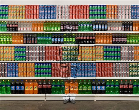 supermarket ii (series 'hide in the city') by liu bolin