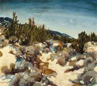 new mexico landscape by joseph amadeus fleck