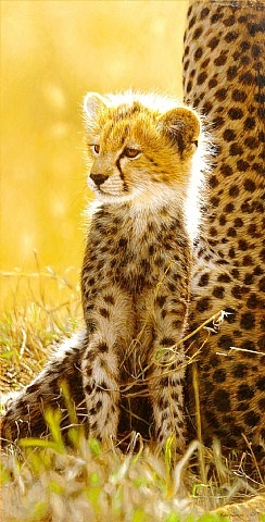 close to mum by tony karpinski