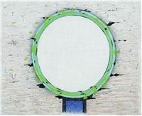 grüner spiegel vor wüste by meret oppenheim