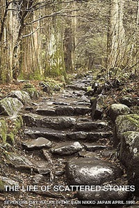 the life of scattered stones, seven one day walks in the rain, nikko, japan by hamish fulton