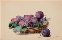 basket of plums by louis marie de schryver