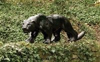 jaguar by michael cooper