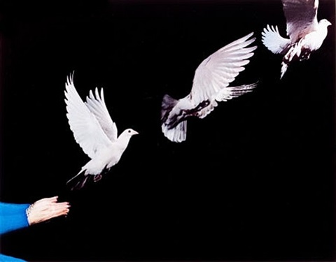 pigeon release by harold eugene edgerton