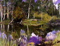 the pond by adele alsop