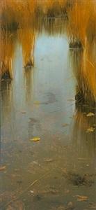 gull reflections by david allen dunlop