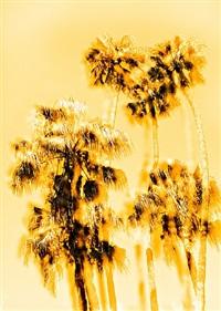 las palmeras dos by diego kahlo