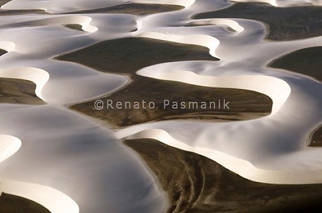simbiose by renato pasmanik