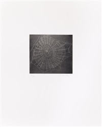 the moca portfolio (set of 6) by vija celmins