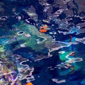 sea glass by roslyn meyer