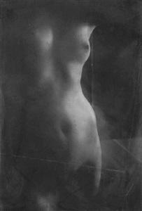 torso i, tokyo, japon, 2005 by donata wenders