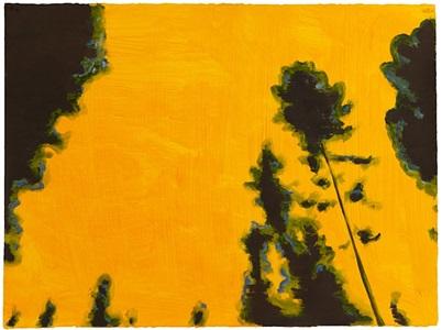 haloed pines by mike piggott