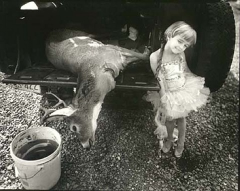 jessie and the dear by sally mann
