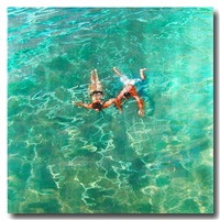 into the clear by eric zener