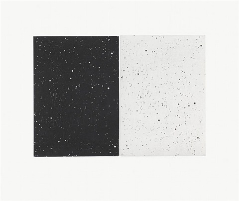 black and white diptych by vija celmins