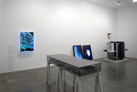installation view by erik wysocan