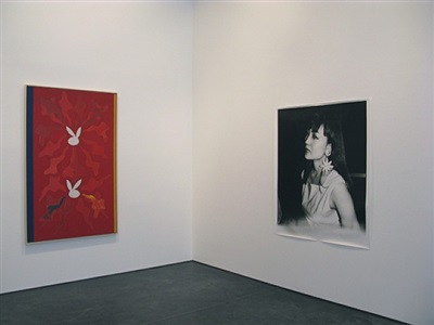 exhibition view (philip taaffe/nobuyoshi araki)