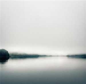 untitled (from wilderness series) by debra bloomfield