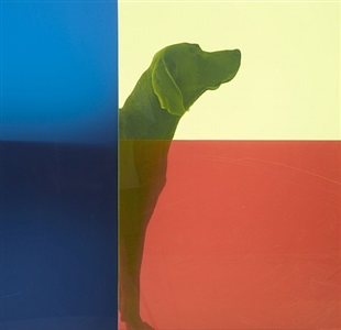 flag rising moment by william wegman