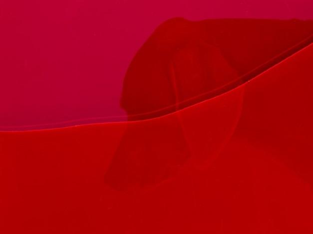 red river by william wegman