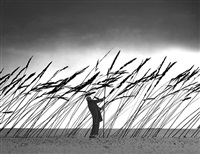 sauver la nature by gilbert garcin