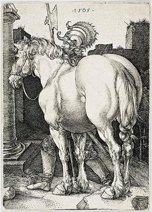the large horse by albrecht dürer