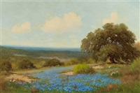 bluebonnets by palmer chrisman