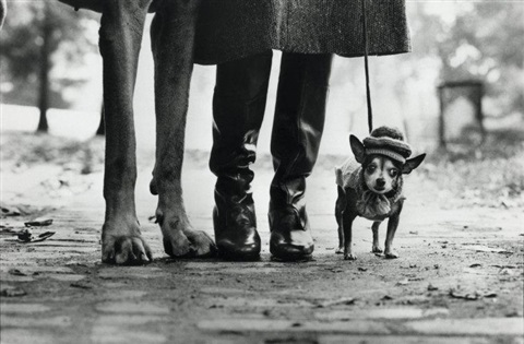 felix gladys and rover new york by elliott erwitt