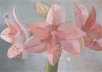 amaryllis by celia reisman