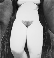 nude 119, new york by irving penn