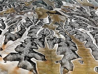 dryland farming #11, monegros county, aragon, spain by edward burtynsky
