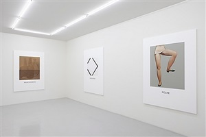 installation view - double vision, 2011 by john baldessari