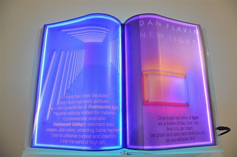 dan flavin, open book (light) by airan kang