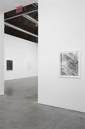 certain variables installation view by luisa lambri