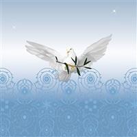 der heilige geist by heidi popovic