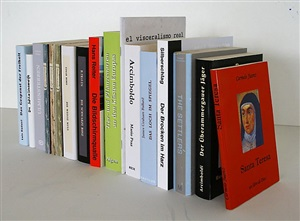 bibliothek (arturo belano) / library (arturo belano) by andres lutz & anders guggisberg