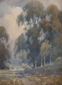 eucalyptus and clouds by percy gray