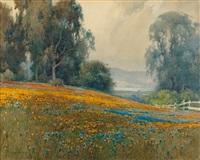 eucalyptus grove with poppies and lupine and mount tamalpais in the distance by percy gray