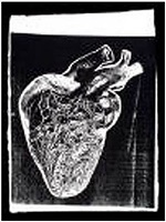 heart (f/s cat. #iiia.18) by andy warhol