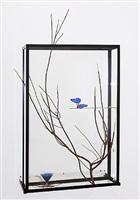 butterfly vitrine by rebecca horn