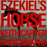 (book) ezekiel's horse by keith carter