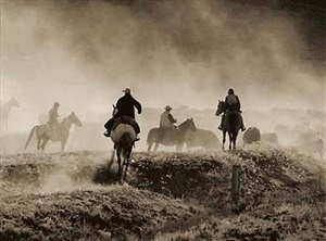 cattle drive #8 - cogan ranch by allen birnbach
