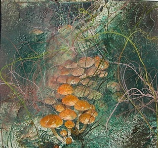 forest floor 07-08-11 by michael porter
