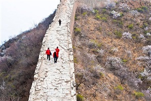 the wall, beijing by anne li
