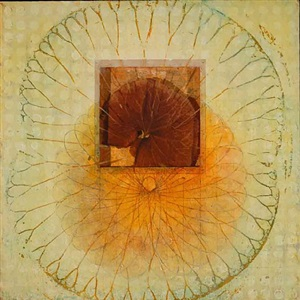 untitled (wheel/lotus/ligularia) by sara crisp