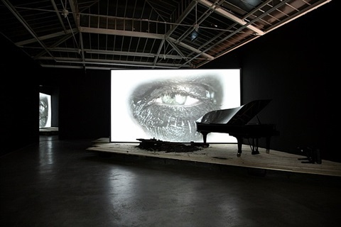 phantom by douglas gordon