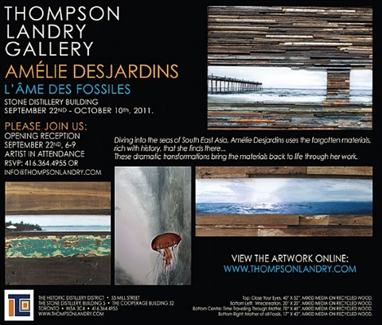 l'ame des fossiles exhibition by amélie desjardins