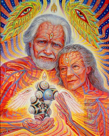 the shulgrins and their alchemical angels by alex grey