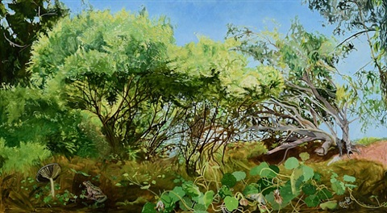 tangled woods by cayetana conrad
