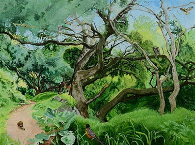 black oaks iv by cayetana conrad